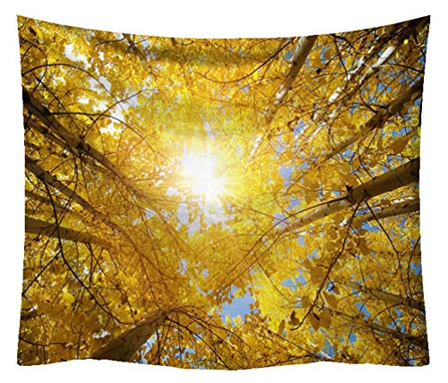 ZebraSmile Soft Plush High Definition Forest Tapestry Thick and Heavy Fabric Tree Wall Hanging Printing Tapestries Cloth for Bedroom Dorm Living Room Home Backdrop Decor with Clips, Gold 59 by 51 in ()