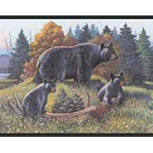 Wallpaper York Inspired by Color Borders Black Bear Border WL5627B by Scarbrough Faire