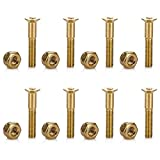 Tera 8Pcs of 29mm/1.1in Skateboard Mounting Hexagon Hardware Screws Replacement Kit Gold