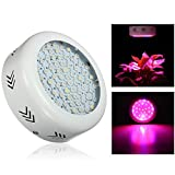 Jeteven 216W 72 LEDs UFO Plant Growing Lights Lamp Kit Full Spectrum for Garden Indoor Greenhouse Hydroponic Grow Review