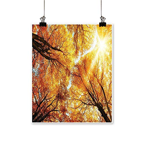 Modern Painting Beech Trees Freshening Picture of Warm Fall Sun Pattern Accessories Gold Brow Bedroom Office Wall Art Home,24