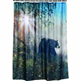 Bear Shower Curtain Review and Comparison