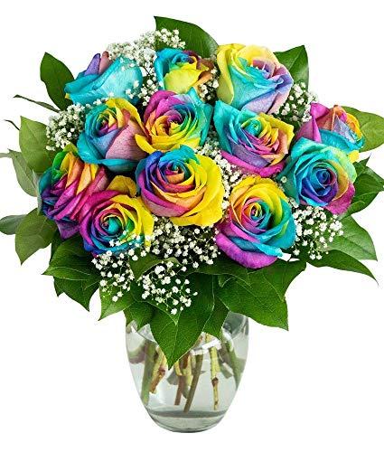 Flowers - One Dozen Wild Rainbow Roses (Free Vase Included)