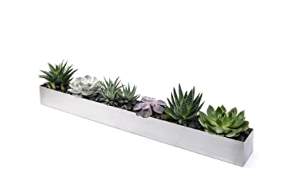 c0d90f2c35c Amazon.com   Veradek Geo Trough Planter