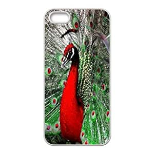 High Quality Phone Back Case Pattern Design 16Peacock Open It's Cock- For Apple Iphone 5 5S Cases