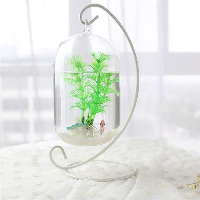 Wankd - Pecera Colgante de Cristal de 15 cm de Altura para Acuario, pecera, Flor, jarrón con Estante de 23 cm de Altura, Color Blanco: Amazon.es: Hogar