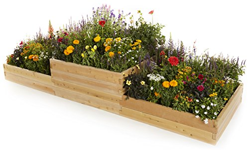 Naturalyards Raised Garden Bed, Multi-Level (Cedar, 2'x6'x22'') by Naturalyards