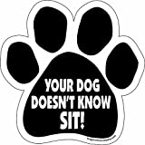 Car Magnet- Paw- Your Dog Doesn't Know Sit- 5.5'' x 5.5''
