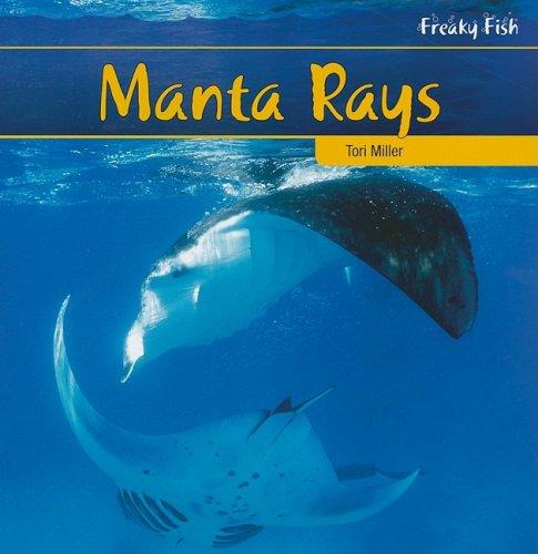 Manta Rays (Freaky Fish) ()
