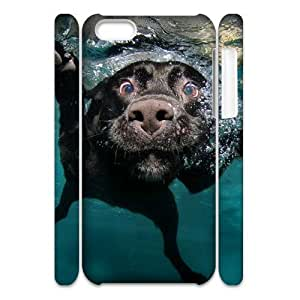 FLYBAI Labrador dog Phone 3D Case For Iphone 5C [Pattern-2]