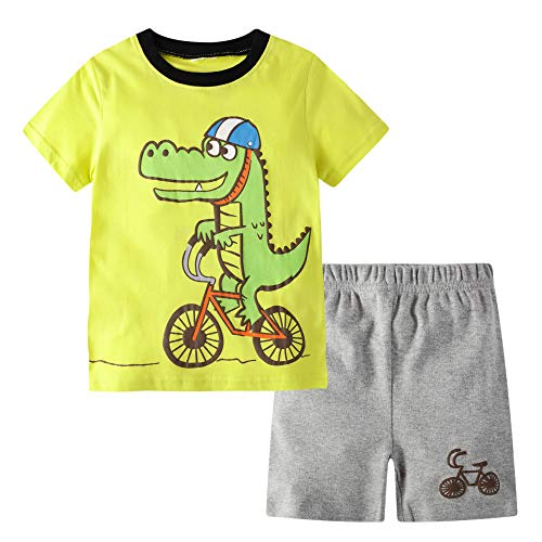 (BIBNice Boys Outfits Cotton T-Shirt and Short Sets Dinosuar Size 2t)