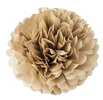 Pack of 20 Tissue Paper Pom Poms 8 inches for Party Decorations and wedding flowers Burgundi