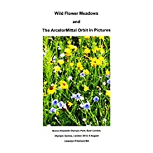Wild Flower Meadows and The ArcelorMittal Orbit in Pictures (Albums Photo t. 18) (French Edition)