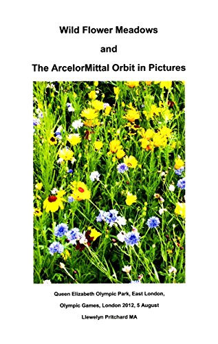 wild-flower-meadows-and-the-arcelormittal-orbit-in-pictures-photo-albums-book-18