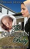 Amish Romance: The Forbidden Baby: A Hollybrook Amish Romance Short Story (Annie's Story Book 1)