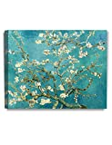DecorArts - Almond Blossom Tree, by Vincent Van Gogh. The Classic Arts Reproduction. Giclee Print On Canvas, Stretched Canvas Gallery Wrapped. 30x24'