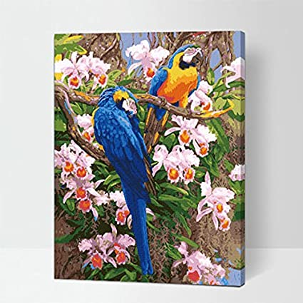MADE4U Animals Series 1 20 Wood Framed Paint By Numbers Kit with Brushes and Paints Bird ) HHGZG435
