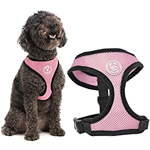 Gooby Dog Harness – Soft Mesh Head-in Small Dog Harness with Breathable Mesh – Perfect on The Go Mesh Harness for Small…