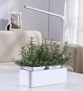 Hydroponic inteligente control Artificial luz Solar Smart jardín + luz de crecimiento + lámpara de lectura Mini jardín interior