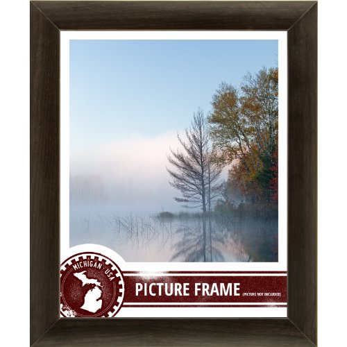 Craig Frames 232477781117N 1-Inch Wide Picture/Poster Frame in Smooth Wood Grain Finish, 11 by 17-Inch, Brazilian Walnut