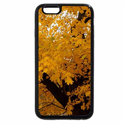 iPhone 6S / iPhone 6 Case (Black) Sparkling Autumn Foliage