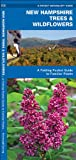 New Hampshire Trees and Wildflowers, James Kavanagh, 1583554130