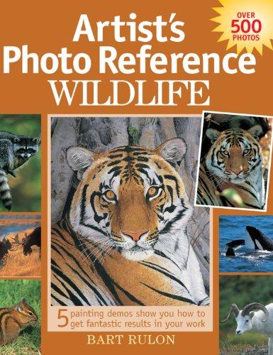 Artist #39;s Photo Reference   Wildlife