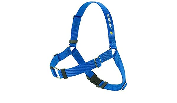 No Pull Dog Harness Small by Softouch Concepts: Amazon.es: Hogar