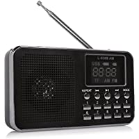 Generic Portable Speaker L-938B AM/FM Radio Music Player Micro SD/TF Card
