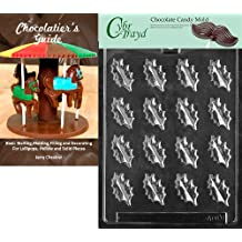 Cybrtrayd Bk-AO111 Oak Leaves All Occasions Chocolate Candy Mold, Small with Chocolatier's Guide