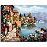 Framed Pictures DIY Painting By Numbers Home Decoration For Living Room DIY Digital Canvas Oil Painting 40x50cm