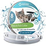 Flea and Tick Prevention Collar for Cat - Cat Flea Collar - Cat Flea Treatment - Cat Flea and Tick control - Cat Flea and Tick collar - Cat Fleas collar Control Collars Flea & Tick Prevention for Cat