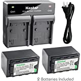 Kastar 2x Battery + Fast Dual Charger for Panasonic AG-VBR59 AG-VBR89G AG-VBR118G and AG-DVX200PJ AG-3DA1 (3DA1E) AG-AC8 AC8EJ AG-AC8PJ AG-AC30 AG-DVC30 HC-X1000 HC-X1 HDC-Z10000 (Z10000GK, Z10000P)