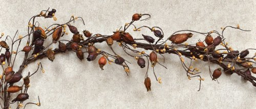 Dried Rose Hip Ivory Pip Garland Country Primitive Floral Décor (Garland Hip Rose)
