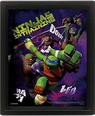 1art1 Las Tortugas Ninja - Ninjas In Training, 3D Poster ...