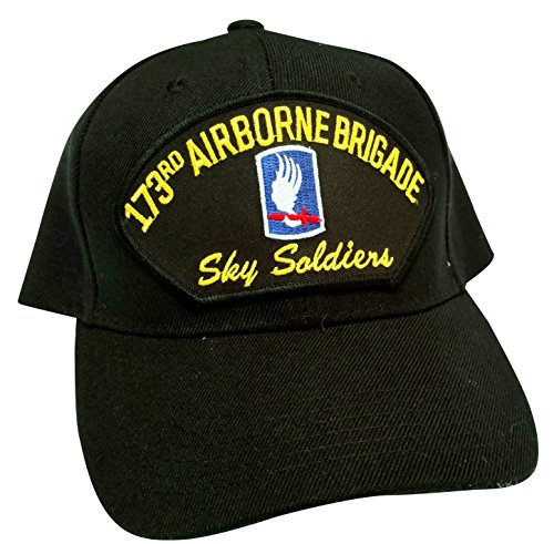 (US Army 187th Airborne Brigade Sky Soldiers Low Profile Adjustable Ball Cap)