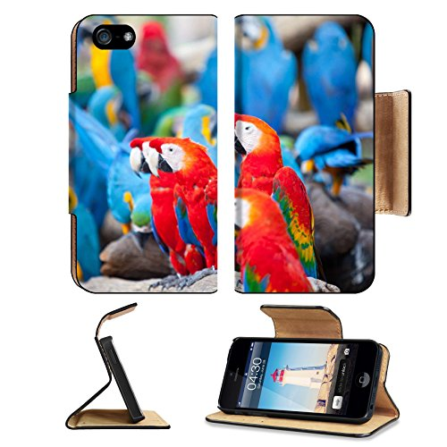 Liili Premium Apple iPhone 5 iphone 5S Flip Pu Leather Wallet Case Parrot sitting on a tree iPhone5 Photo 20910462 Simple Snap - Discount Cards Gift Australia