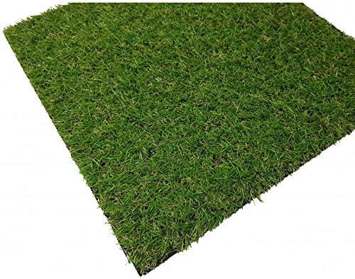Cesped Artificial Terraza Plus 20 Mm Rollo De 2X10: Amazon.es: Jardín