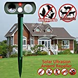 Best Animal Repellers - Lubatis Solar Animal Repeller Outdoor Ultrasonic Cat Repellent Review