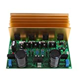 MagiDeal AD-300 Dual Channel HIFI Stereo Amplifier Board 24V Low Noise Enhanced Version for Car Audio, Motorcycle Audio And Home Theater