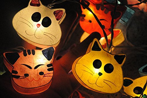 Cat String Patio Lights in Florida - 2