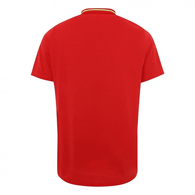 c080a039907 Liverpool FC 18 19 Elite Leisure Football Polo Shirt - RCR  Amazon.co.uk   Clothing