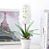 Mkono Artificial Plant Silk Flower Hyacinth with Ceramic Planter Vase Fake Potted Pot White