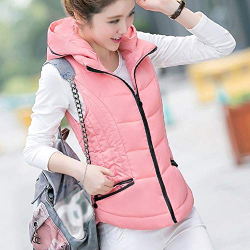 Zip Vest Pink with Up Hood Women's Padded Quilted Jackets Gilet GladiolusA q4pXw