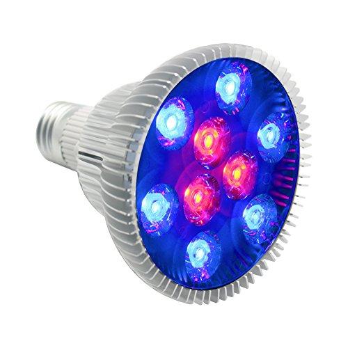 Wavelength Of Blue Led Light - 9