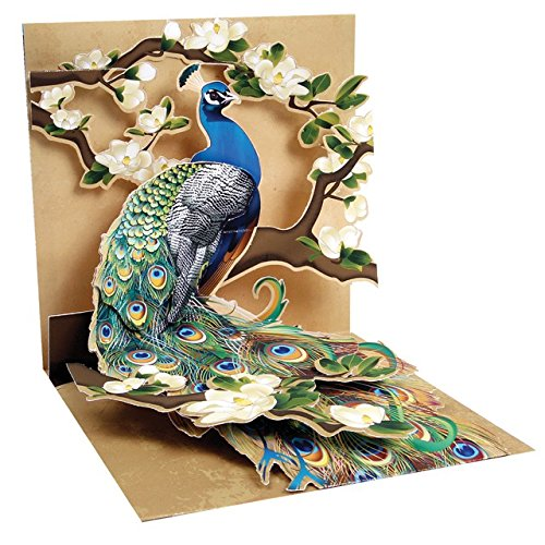 1 X Pop - Up Greeting Card (Peacock and Magnolias)