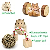 ZALALOVA Hamster Chew Toys, 10Pack MSDS Approved