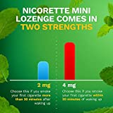 Mini Nicorette Nicotine Lozenge Stop Smoking Aid, 2 mg, Mint Flavored Smoking Cessation Product, 81 Count and 4 mg, Mint Flavored Smoking Cessation Product, 81 Count