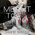 Meant to Be: Heaven Hill, Book 1 Audiobook by Laramie Briscoe Narrated by Jim Tedder
