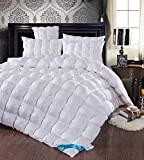 TheFit Paisley Luxury Heavy Weight White Goose Down Comforter Set for Winter and All Season Handwork 100% Cotton, Queen King Set, 1 Pieces (Queen)